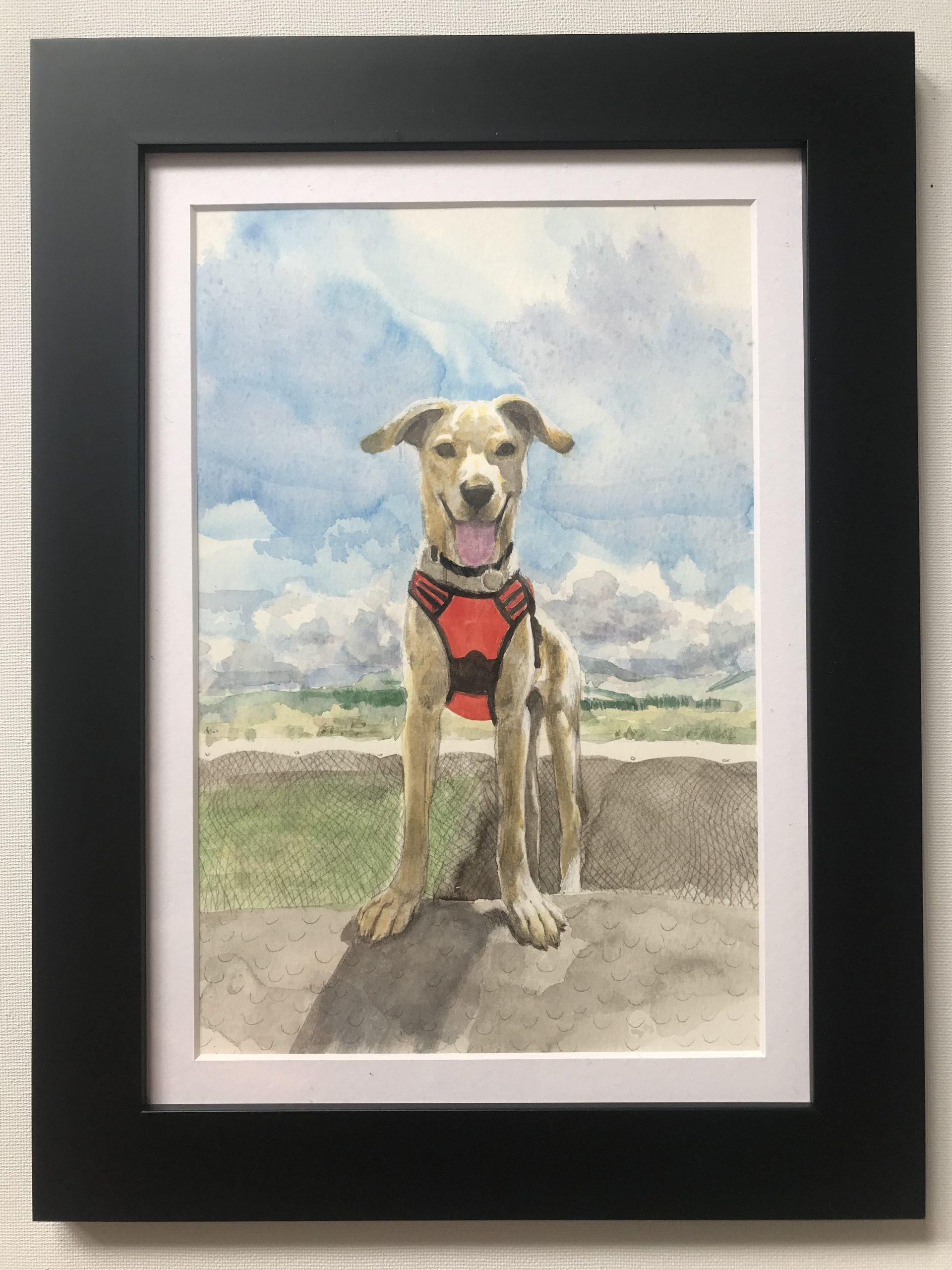watercolour painting of a dog